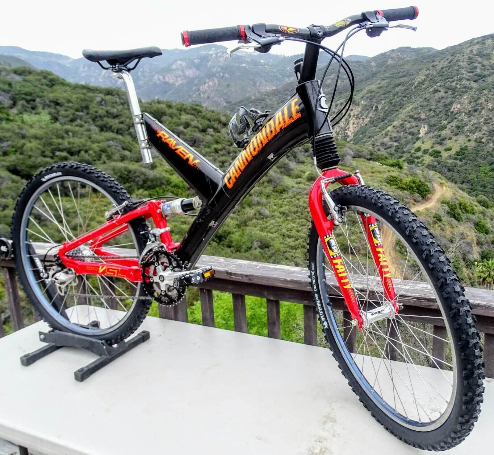 raven mountain bike in mountains